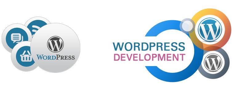 WordPress for Improving Custom Functionality